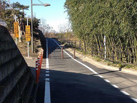 160211yoshioka_001b.jpg